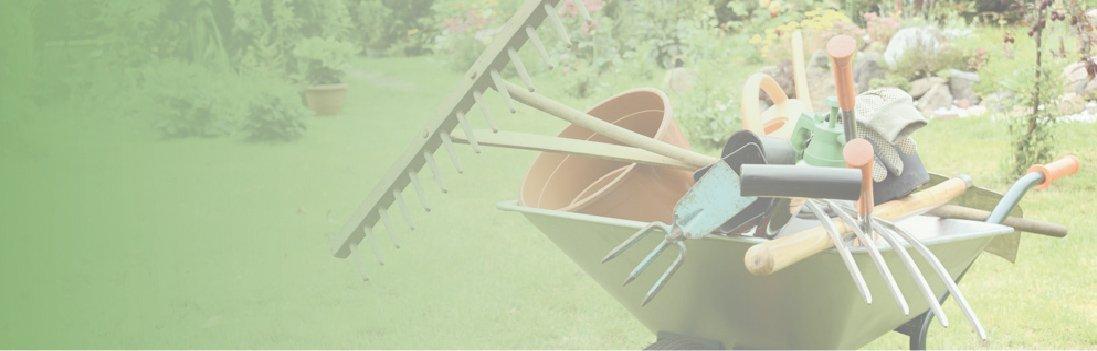 limpieza y mantenimiento de jardines en torrejón de ardoz