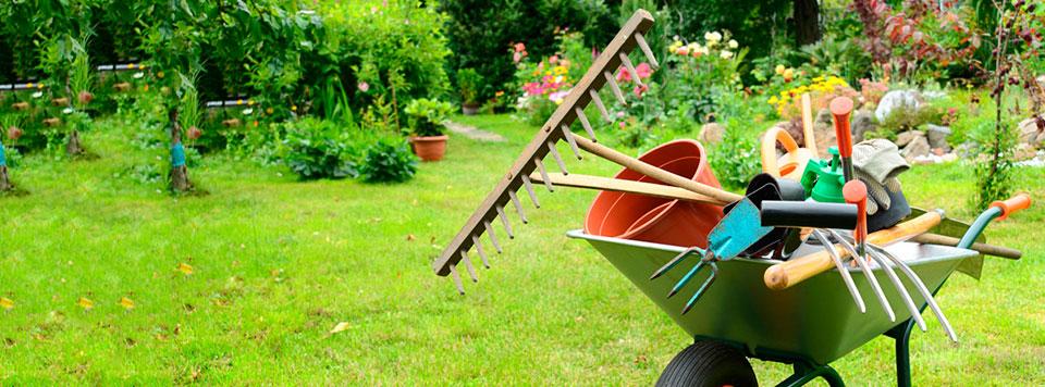 Jardiner a ccclean - Servicios de jardineria ...