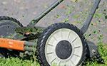 mantenimiento de jardines torrejon de ardoz