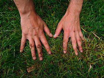 mantenimiento de jardin en madrid escarificar